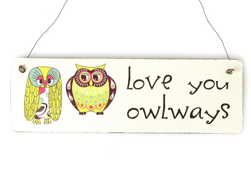 shabby vintage schild t rschild love you owlways eulen geschenk. Black Bedroom Furniture Sets. Home Design Ideas